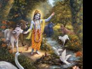 Flora, Fauna and Climate in the Vedas