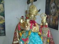 Krishna deity is guarded well