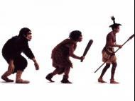 Charles Darwin's theory