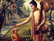 Concentration on brahmacarya? Is it for you?