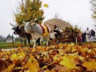 New Vrajadhama Warms Hearts This Autumn