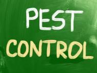 NON-VIOLENT MEANS OF PEST CONTROL
