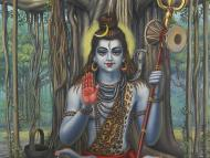 In Search of the Greatest Vaishnava