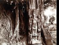 Worship of Lord Brahma, Part 90