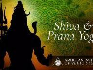 Shiva and Prana Yoga