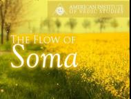 The Flow of Soma