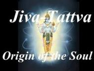 All about origin of Jiva