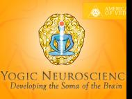 Yogic Neuroscience