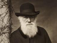 The Mechanistic Darwinian