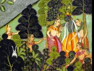 The Holy Places of Jaiva Dharma: Vrndavana