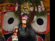 Naba Kalebar Yatra of Sri Jagannatha, Part Two