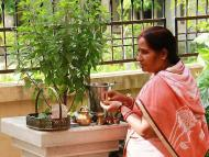 The Blessings and Names of Srimati Tulasi-devi