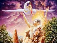 THE DREAM OF ĀMĀRA – IMMORTALITY