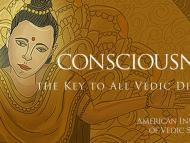 Consciousness, the Ultimate Power of Knowing and Healing