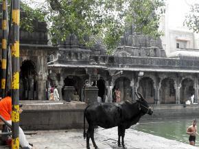 Caitanya Mahaprabhu's Tirtha-yatra, Part 33