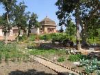India Orcha 028.jpg