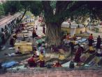 Bodh Gaya - Buddhistic centre - Mahabodhi temple  24.jpg