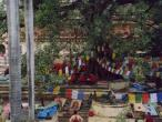 Bodh Gaya - Buddhistic centre - Mahabodhi temple  30.jpg