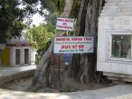 Jyotisar 1.jpg