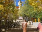 Ladakh - Likir monastery 18.JPG