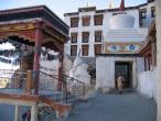 Ladakh - Spituk monastery 04.JPG