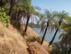 Go karna - Om beach 022.jpg