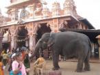Udupi - Sri  Krishna temple 014.JPG