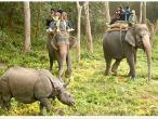 chitwan_national_park.jpg