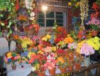 Flower shop 002.jpg