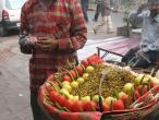 Jaipur food 004.JPG