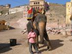 India Jaipur 008.jpg