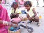 India Jaipur 018.jpg