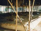 Kumbhakonam-yajna-tent.jpg