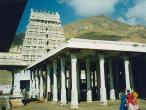 Arunachaleswra-temple6.jpg