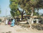 Bharata-koop-water-colectio.jpg