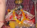 Radha Raman temple Go puja 055.jpg