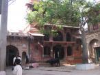 Radha Valabha temple old 1.jpg
