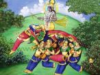 gopi-elephant.jpg