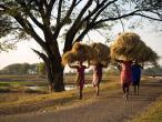 Life in India 07.jpg