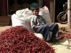 Life in India 165.JPG