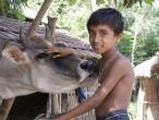 Life in India 198.JPG