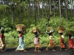 Life in India 20.jpg