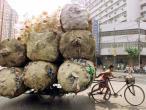 Life in India 26.jpg