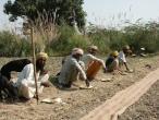 Life in India 270.JPG