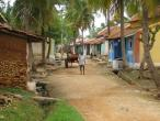 Life in India 37.jpg