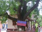 Yogapith, Mayapur 45.jpg