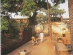 Radhakunda 262.jpg