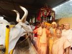 ISKCON Varanasi 56.jpg