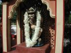 Jayapataka Swami Vyasapuja 28.JPG