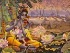 Krishna Gopal.jpg